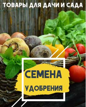 Дача , сад , огород